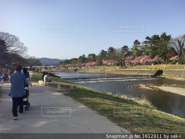 春の訪れの写真・画像素材[1612911]