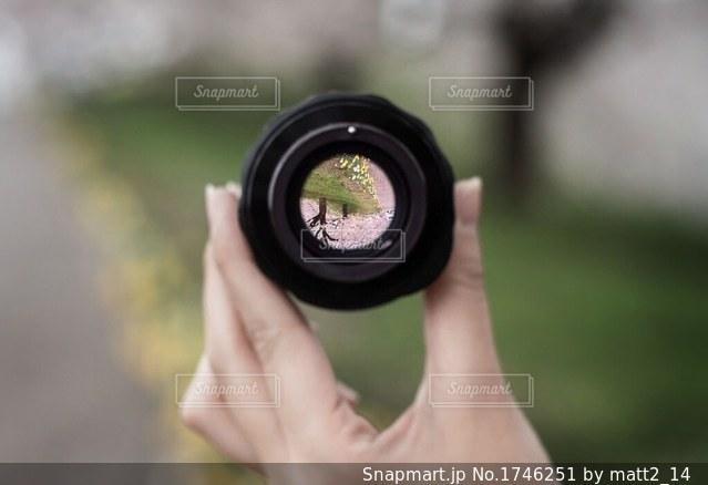 レンズ越しの桜の写真・画像素材[1746251]