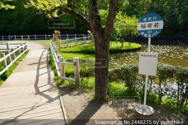 サツキとメイの家 バス停の写真・画像素材[2448275]