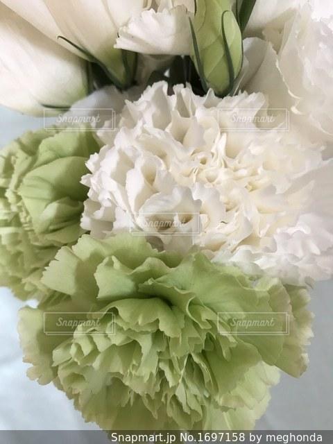 白い花束のアップの写真・画像素材[1697158]
