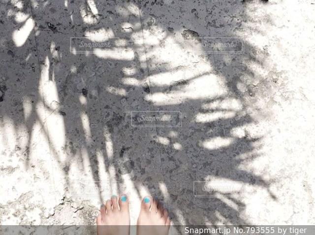 砂浜とヤシの木の影の写真・画像素材[793555]