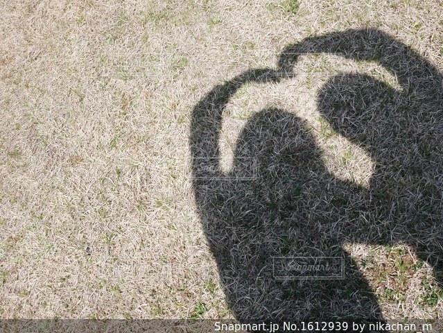 影ハートの写真・画像素材[1612939]