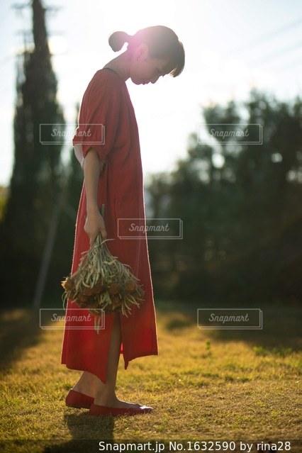 庭でフリスビーを持って男は、の写真・画像素材[1632590]