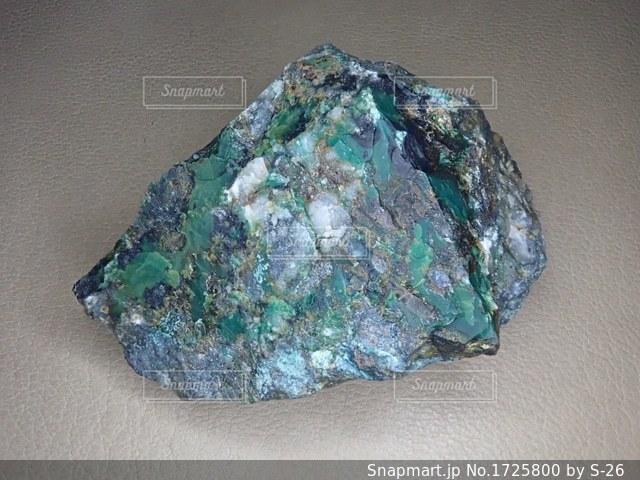 毒鉄鉱の写真・画像素材[1725800]