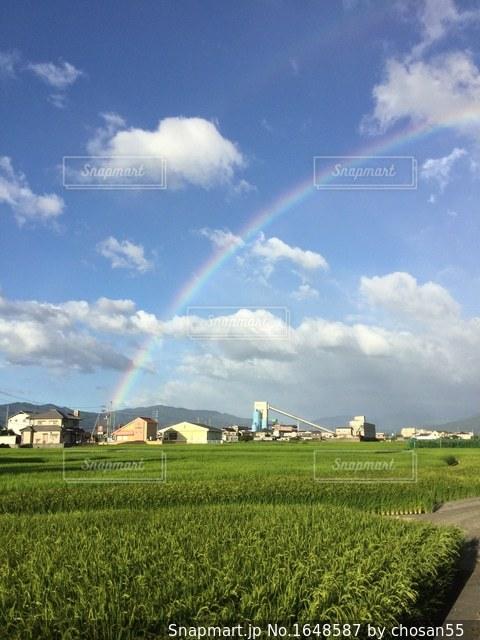 草のフィールドに虹がかかったの写真・画像素材[1648587]