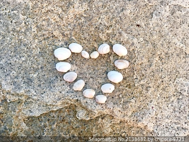 貝殻のハートの写真・画像素材[2138882]