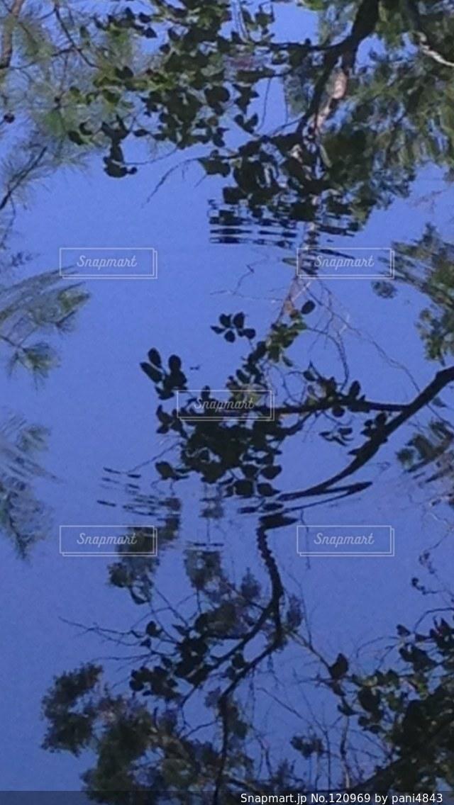 屋外の写真・画像素材[120969]
