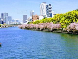 ビルと川と桜の写真・画像素材[1832727]