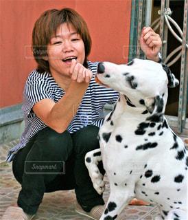 犬と女性の写真・画像素材[2013522]
