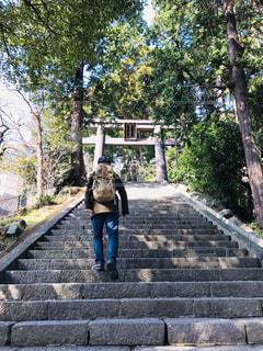 自然,階段,後ろ姿,人物,背中,人,後姿,熱海,静岡,石段,景観,登る,上がる,伊豆山神社,モデルss