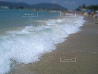 海の写真・画像素材[2359149]