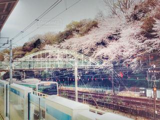 飛鳥山公園と電車と橋のコラボの写真・画像素材[1886223]