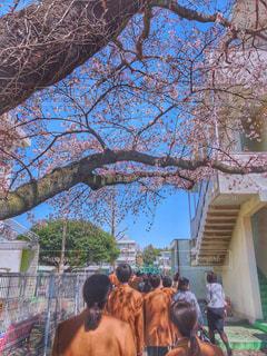 学校生活の写真・画像素材[1993724]