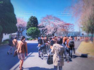 入学式の会場への写真・画像素材[1998564]