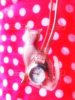 猫,インテリア,動物,屋内,ピンク,赤,白,時計,ねこ,紅白,水玉,可愛い,数字,カラー,針,ネコ,フォトジェニック,ファンシー,インスタ映え,クォーク