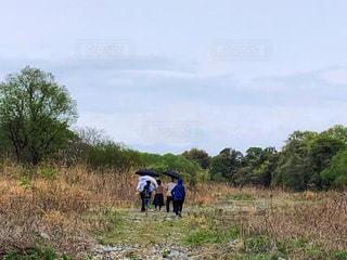 女性,自然,風景,空,雨,傘,屋外,後ろ姿,景色,女子,女の子,背景,人物,背中,人,祖母,男の子,天気,小雨,孫,雨の日,ブレーカー,ジャンパー,透明傘,黒傘