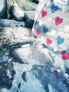 水たまりの写真・画像素材[2217478]