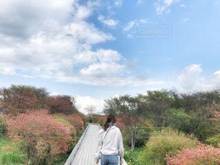 お散歩への写真・画像素材[2260120]