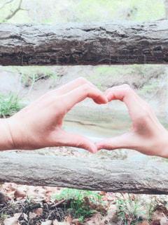 自然,風景,木,屋外,緑,手,川,景色,人,茶,ハンドサイン