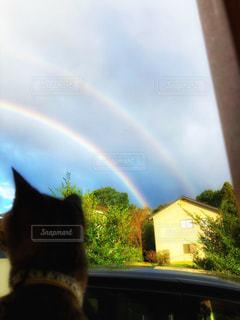 二重の虹の写真・画像素材[2597160]