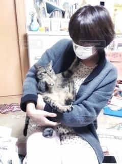 子猫と一緒にの写真・画像素材[2677603]