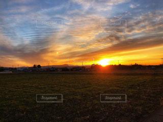 夕日のような朝陽の写真・画像素材[2896388]