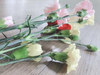 花のクローズアップの写真・画像素材[3192419]