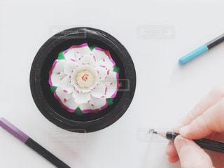 花,屋内,手,ペン,人物,人,紙,おえかき,おうち時間