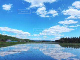 田園の写真・画像素材[3250663]