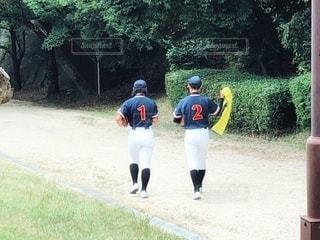 野球の写真・画像素材[3424943]