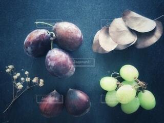 果物の写真・画像素材[3716364]