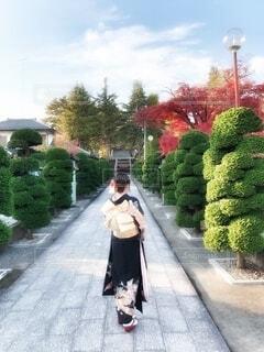 女性,風景,空,花,屋外,神社,樹木,道,人,イベント,歩道,和服,お祝い,晴れ着,神道,成人式,和装,草木,行事,ガーデン,履物,成人の日
