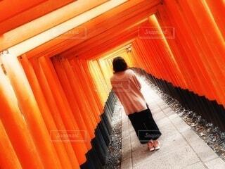 伏見稲荷の千本鳥居の中の後ろ姿の女性の写真・画像素材[4722745]