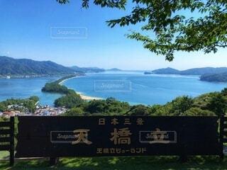 日本三景天橋立の写真・画像素材[4728880]