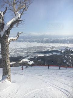 スキーの写真・画像素材[1745990]