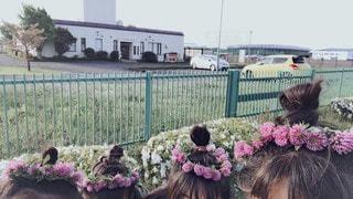花かんむりの写真・画像素材[3489016]
