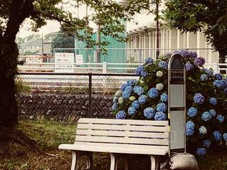 風景,屋外,ベンチ,紫陽花,座る,ノスタルジー,梅雨