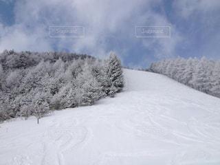 静かなスキー場の写真・画像素材[1749034]