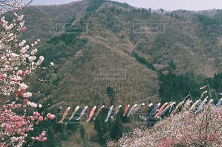 山の上に立っている人のグループの写真・画像素材[722046]