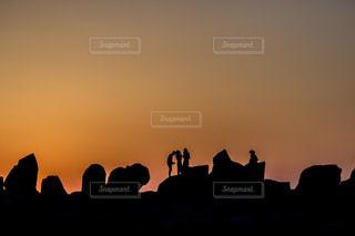 飛行と日没の前に立っているカモメの群れの写真・画像素材[923578]