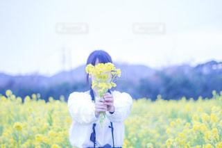 フィールドに黄色の花の人の写真・画像素材[1052476]