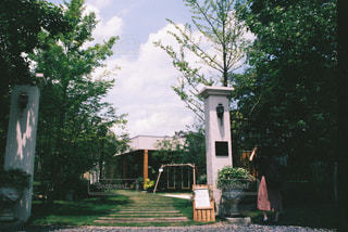 家の前に木の写真・画像素材[1157795]