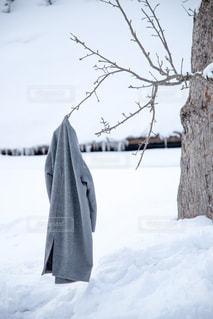 雪に覆われたフィールドの写真・画像素材[1665432]