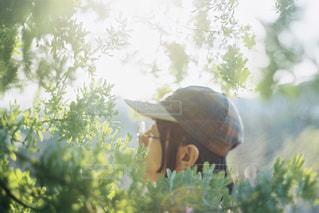 男性,1人,20代,ファッション,自然,アクセサリー,木,屋外,帽子,木漏れ日,眼鏡,横顔,太陽光,ミモザ,キャップ,丸メガネ,丸眼鏡,メガネ