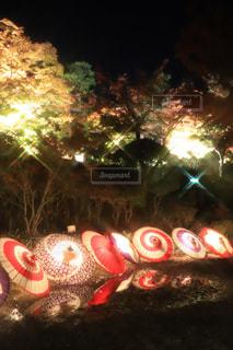 和傘ライトアップの写真・画像素材[2182297]