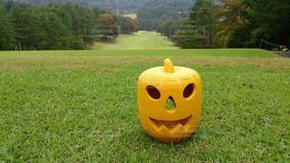 ゴルフ場もハロウィン仕様の写真・画像素材[2618406]