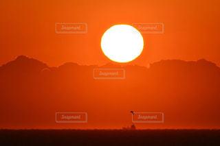 風景の写真・画像素材[529306]