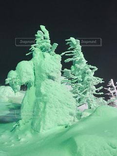 雪で覆われたケーキの写真・画像素材[1794448]
