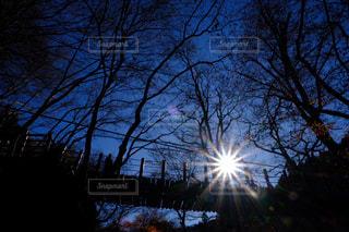 自然,空,冬,橋,太陽,光,花貫渓谷