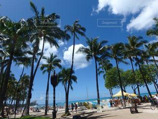 海,空,ビーチ,ハワイ,Hawaii,ワイキキ,ホノルル,ワイキキビーチ,アロハ,aloha,インスタ映え